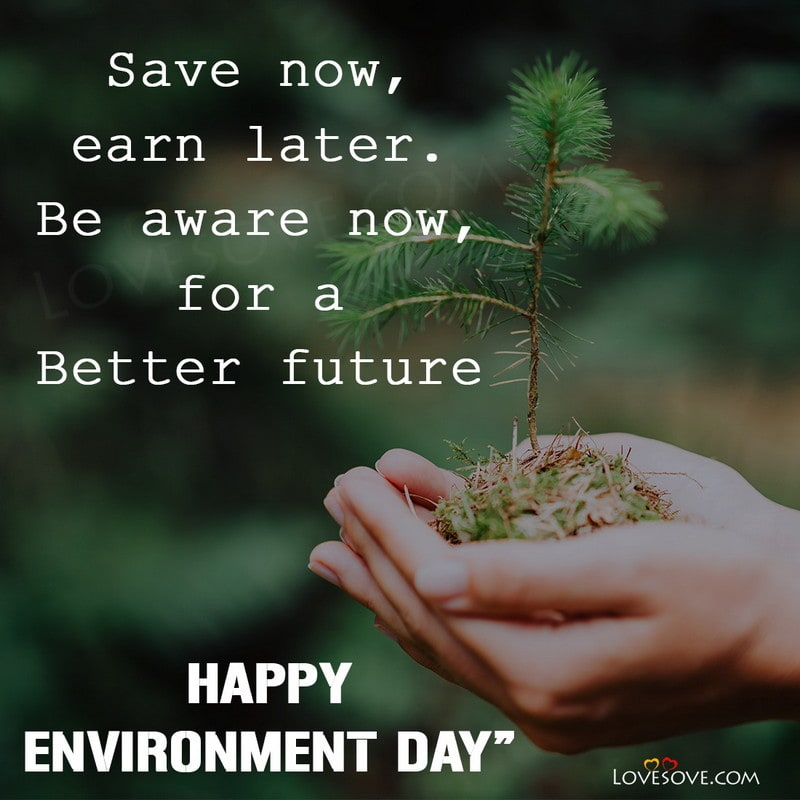 world environment day quotes in hindi, nice quotes for world environment day, world environment day quotes images, happy world environment day quotes, inspirational quotes on world environment day, june 5 world environment day quotes, world environment day quotes in english