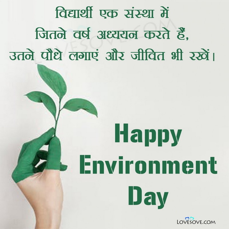 world environment day greeting cards, world environment day quotes in english, world environment day pictures, world environment day facts, world environment day quotes, quotes on world environment day, quotes for world environment day, best quotes for world environment day, quotes about world environment day, world environment day quotes in hindi