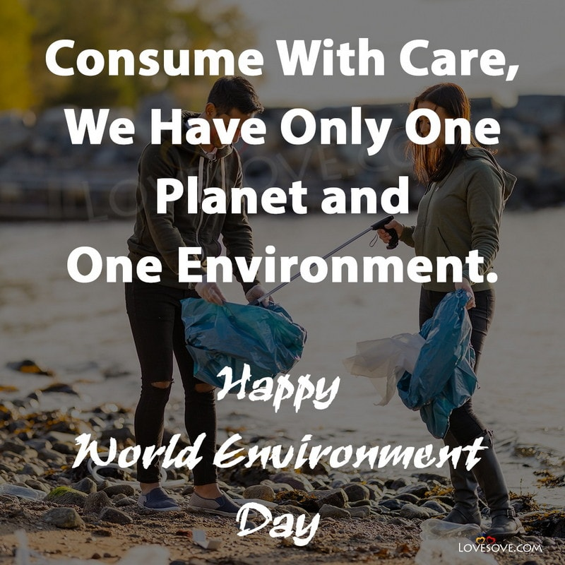environment day wishes, environment day wishes images, world environment day 2020 wishes, world environment day wishes images, world environment day wishes, environment day greeting cards, world environment day greeting cards, happy environment day wishes, environment day best wishes