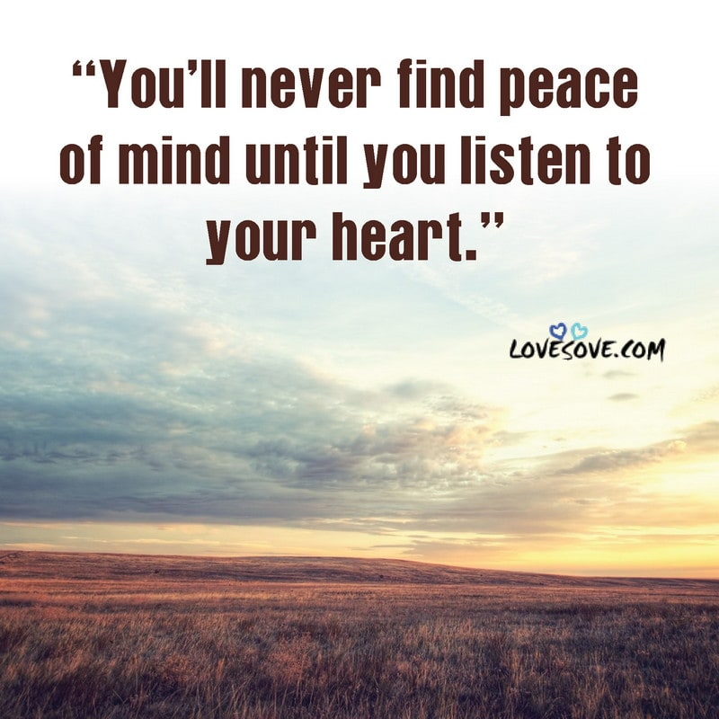 peace quotes about nature, peace quotes from quran, peace quotes quran, peace quotes gandhi, prayer for peace quotes, peace prayer quotes
