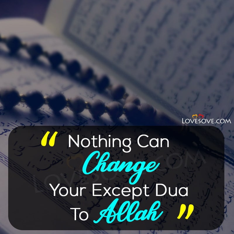 Islamic quotes, Islamic quotes about love, Islamic quotes love, Islamic quotes life, Islamic quotes about life, Life islamic quotes, Islamic quotes of life, Islamic quotes on life, Islamic quotes images, Islamic quotes about parents, Islamic quotes parents, Islamic quotes on parents, Islamic quotes in arabic, Wallpaper with islamic quotes, Islamic quotes about family, Islamic quotes with images, Islamic quotes wallpaper, Islamic quotes tumblr, Islamic quotes charity, Islamic quotes good morning, Islamic quotes in english, Islamic quotes english, Islamic quotes for husband and wife, Islamic quotes for ramadan,
