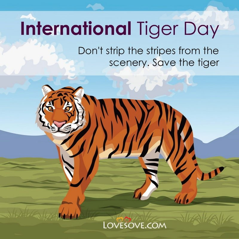 International Tiger Day, International Tiger Day Slogan Wishes, International Tiger Day Quotes, International Day Of Tiger, International Tiger Day 2020, International Tiger Day Slogan Images