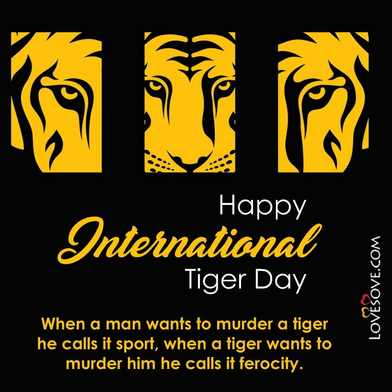 International Day Of Tiger, International Tiger Day Information, About International Tiger Day, Quotes On International Tiger Day, What Is International Tiger Day, International Tiger Day Message, Slogan For International Tiger Day, International Tiger Day 29 July