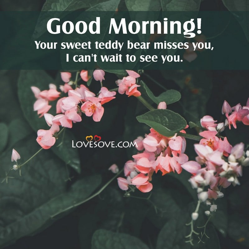 Top 50 Good Morning Thought Quotes Images Good Morning Wishes