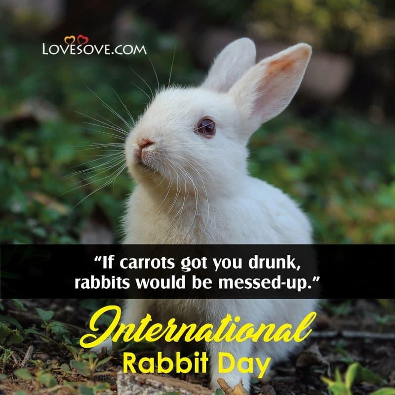 International Rabbit Day, International Rabbit Day 2020, Happy International Rabbit Day,