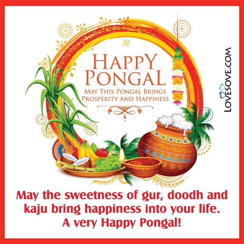 Happy Pongal, Happy Pongal Sms, Happy Pongal Images, Happy Pongal Pictures,