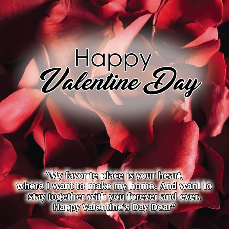 Happy Valentine Day Quotes For Him, Happy Valentine Day Quotes For Girlfriend, Happy Valentine's Day Quotes For Mom, Happy Valentine Day Quotes For Her,