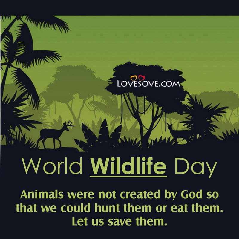World Wildlife Day Quotes, World Wildlife Day Motivational Quotes, World Wildlife Day Inspiring Quotes, World Wildlife Day Inspirational Quotes,