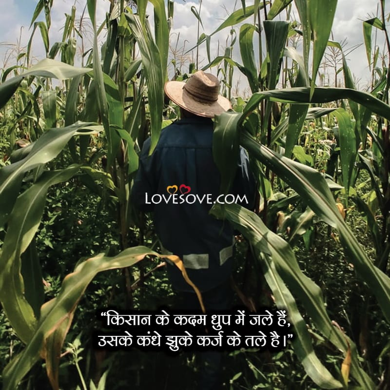 Best Farmer Quotes, Farmer Quotes Funny, Farmer Motivational Quotes, Farmer Related Quotes, Farmer Love Quotes, Farmer Images With Quotes, Quotes For Farmer, Farmer Quotes Images,