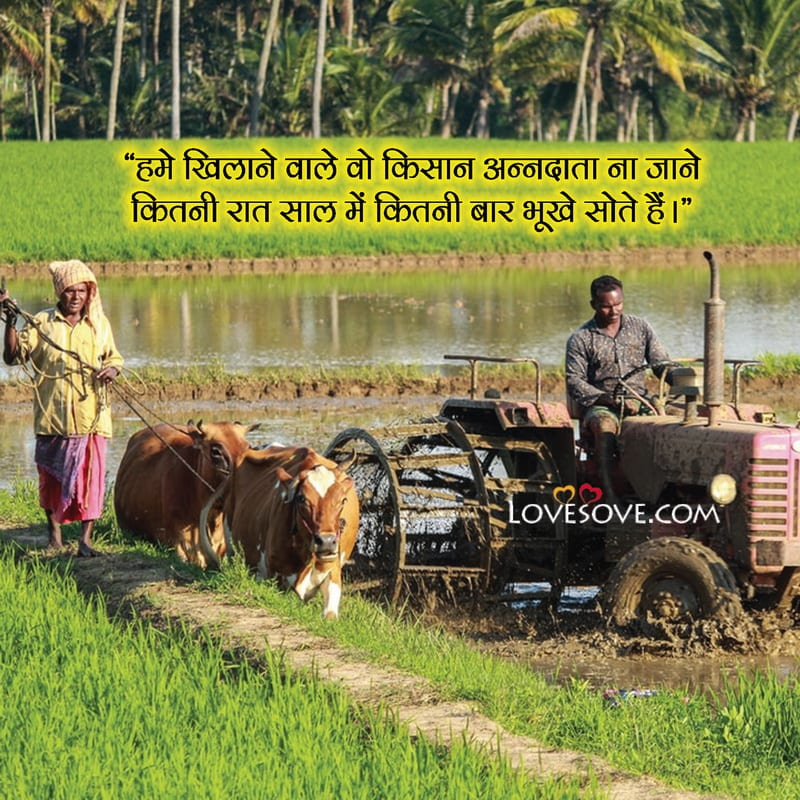 Farmer Life Quotes In Hindi, Farmers Rights Quotes, Farmer Attitude Quotes In Hindi, Farmer Happiness Quotes, Farmer Support Quotes In Hindi, Farmer Relationship Quotes, Farmer God Quotes, Farmer Quotes Wallpapers, Farmer Quotes Hindi, Farmer Quotes Goodreads,
