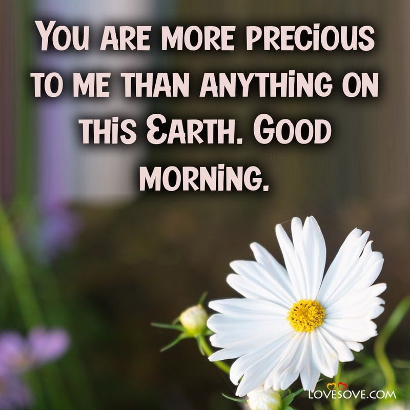 Good Morning Wishes For Love, Good Morning Wishes With Love, Good Morning Wishes To Love, Good Morning Wishes For My Love,