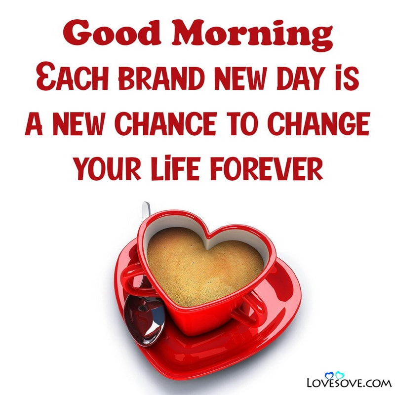 Good Morning Prayer Wishes For My Love, Best Good Morning Wishes For My Love, Good Morning Love Wishes To Her, Good Morning Phrases For My Love,