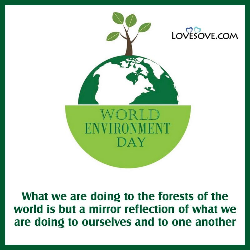 World Environment Day Thoughts, World Environment Day Thoughts In English, Thought On World Environment Day, Thought For World Environment Day, World Environment Day Thought In Hindi,