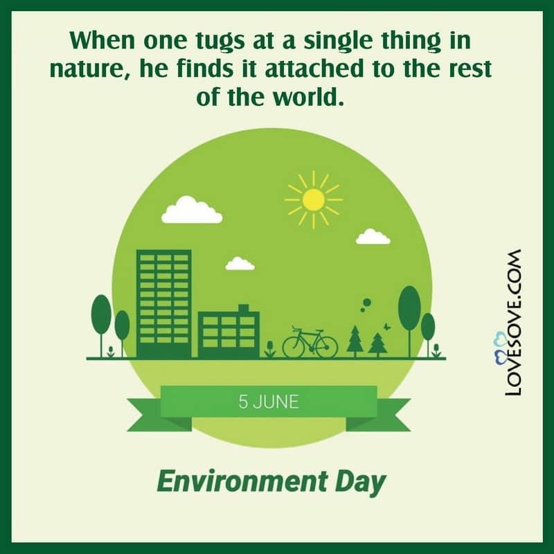 World Environment Day Par Slogan, World Environment Day Theme And Slogan, Slogan For World Environment Day In Hindi, World Environment Day Slogan Hindi, Catchy Slogans On World Environment Day,