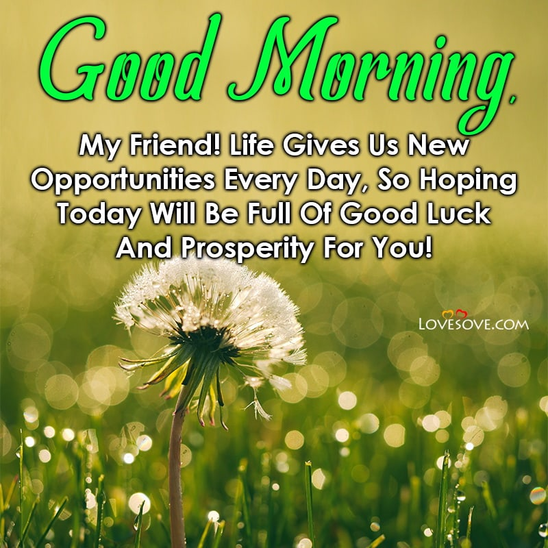 Good Morning, My Friend Life Gives Us New Opportunities Every Day, , good morning message motivation lovesove
