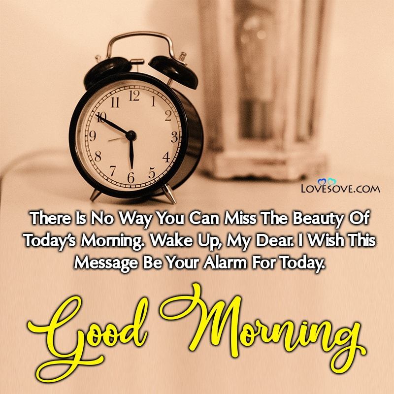 There Is No Way You Can Miss The Beauty Of Today's Morning, , good morning message on whatsapp lovesove