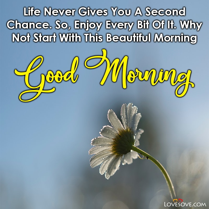 Life Never Gives You A Second Chance So Enjoy Every Bit, , good morning quotes nature lovesove