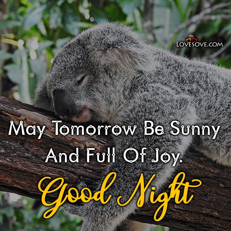 May Tomorrow Be Sunny And Full Of Joy Good Night, , good night quotes love for him lovesove